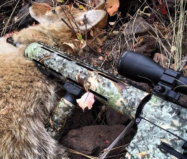 best thermal scope for hog hunting
